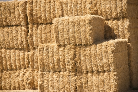 Close up of stacked of hay bales beside the Sierra Nevada mountains