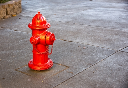 A typical city fire hydrant in high-visibility orange