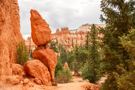 A peaceful setting along a trail through the eroded sandstone amphitheater in Bryce Canyon N.P. photo