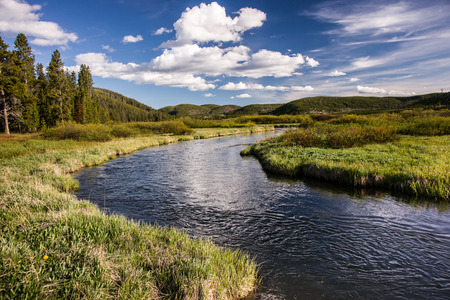 meanders: A pristine trout stream meanders through a valley in the Yellowstone back country.