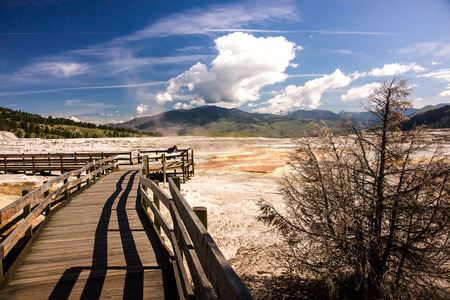 surreal landscape: Wooden boardwalks traverse the surreal landscape at Mammoth Hot Springs.