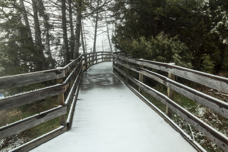 transforms: Falling snow quickly transforms wooden boardwalks into a winter wonderland. Stock Photo