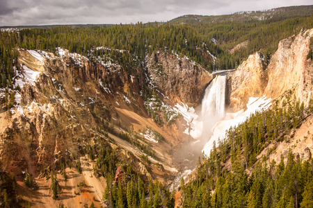 lower yellowstone falls: Spring run-off cascades over the lower falls of the yellowstone River with ice and snow along the canyon.