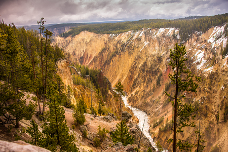 carves: Scenic vista of the Grand Canyon of the Yellowstone river as it carves its way through colorful layers of pastel rock. Stock Photo