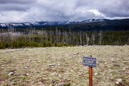 approaches: A late spring snowstorm approaches Mt. Washburn in Yellowstone Park.