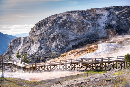 traverse: Wooden boardwalks traverse the surreal landscape at Mammoth Hot Springs.