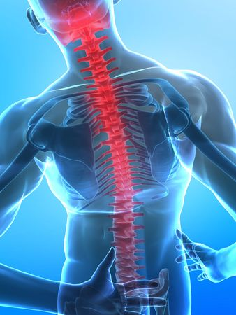 spine x ray: Man with pain in backbone with visible skeleton