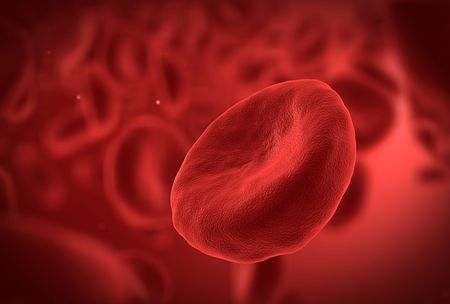 body fluid: High detail view of human blood cell Stock Photo