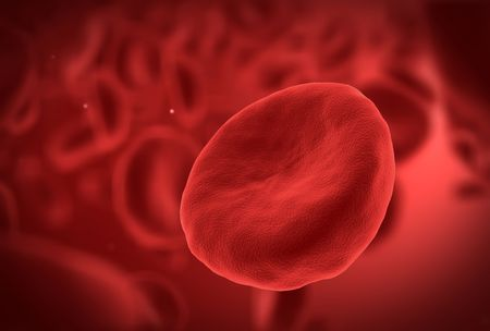 Human blood cells with one red cell in front Stock Photo - 5993941