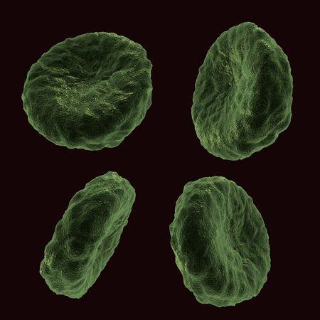 celulas humanas: Cuatro c�lulas humanas de sangre en diferentes posiciones