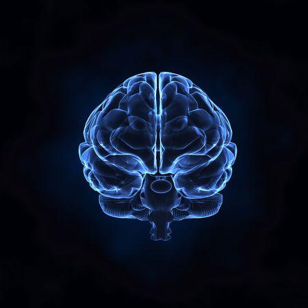 X- ray human brain photo