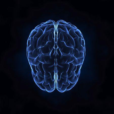 blue brain: X- ray human brain