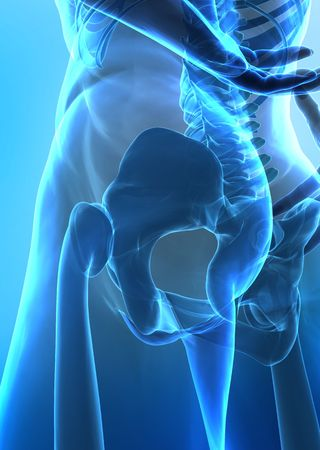 x-ray rear  view of human hip Stock Photo - 6150568