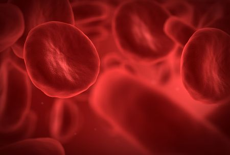 Human blood cells with one red cell in front Stock Photo - 6150559