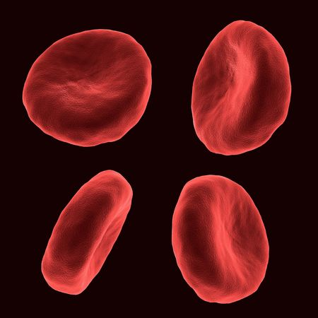 Four blood human cells in different positions Stock Photo - 6150553