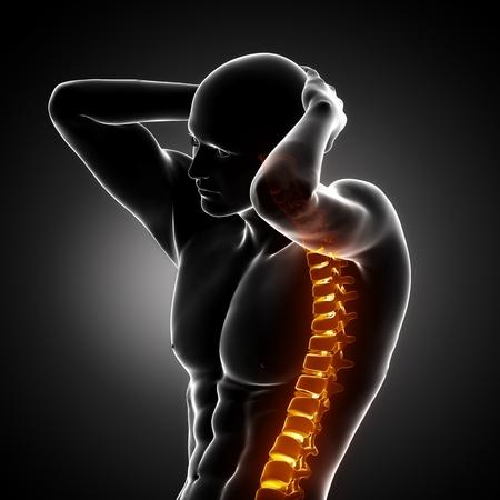 chest x ray: Scansione di Backbone corpo maschile