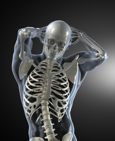 skeleton x ray: Human Body Medical Scan front view Stock Photo
