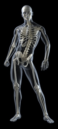 Human Body Medical Scan Stock Photo - 9162826