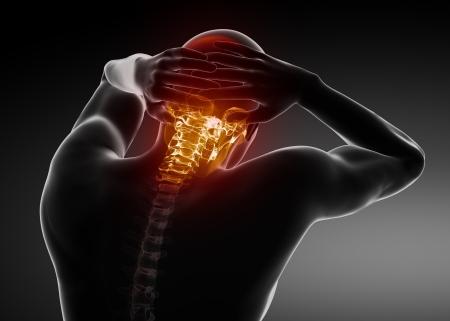 colonna vertebrale: Maschio giugulare scansione della colonna vertebrale Archivio Fotografico
