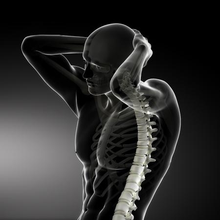 Male Body Backbone Scan Stock Photo - 9162848