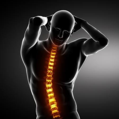 Male Body Backbone Scan photo