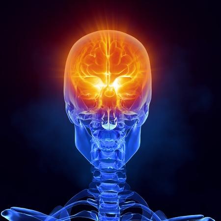 Glowing brain inside skull photo