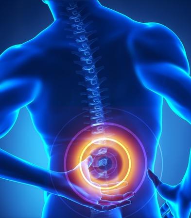 columna vertebral humana: �rea de red troncal de problema resaltados