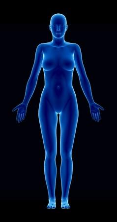x xray: Standing woman