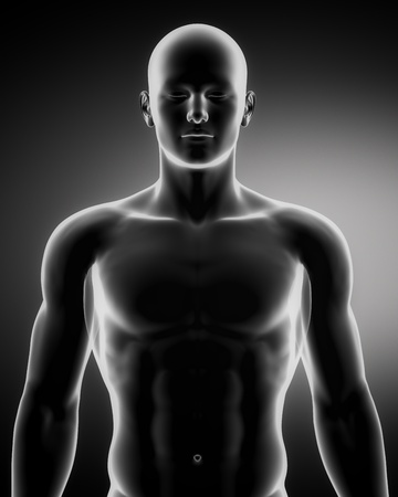 thorax: Male anatomy of human organs in x-ray view Stock Photo