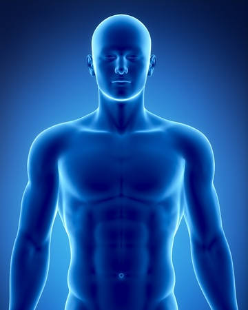 torso: Male anatomy of human organs in x-ray view Stock Photo