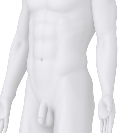 male chest: Male POSING illustration on white angle view