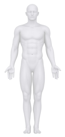 anatomy nude: White man isolated in anatomical position