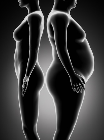 Fat and thin woman comparison photo