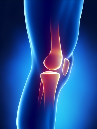 orthopaedics: Vista detallada de la rodilla humana Foto de archivo