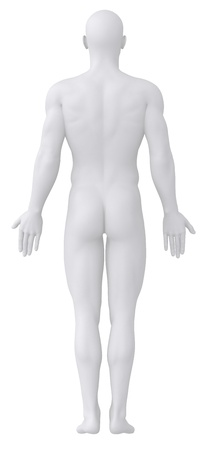 Male body in anatomical position anterior  photo
