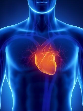 corazones azules: Centrado en el coraz�n humano Foto de archivo