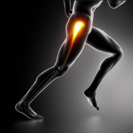 sports massage: Deportes cadera lesi�n koncept