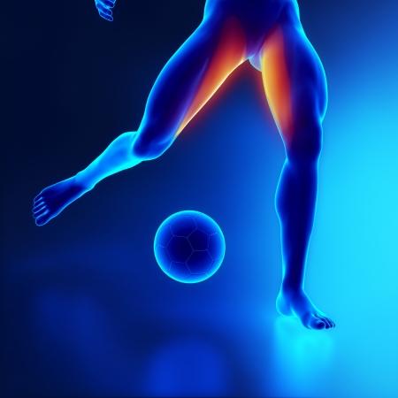 muslos: Muslo Strained concepto muscular en x-ray Foto de archivo