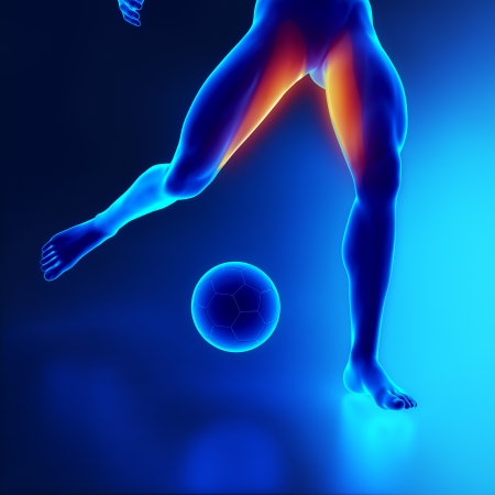 Strained thigh muscle concept in x-ray Stock Photo - 16260553