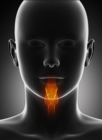 Throat anatomy photo