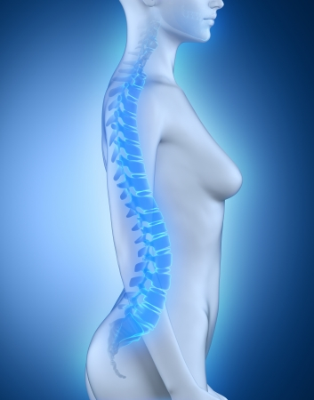 lateral: Female spine lateral view anatomy Stock Photo