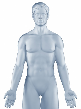 Man in anatomical position isolated photo