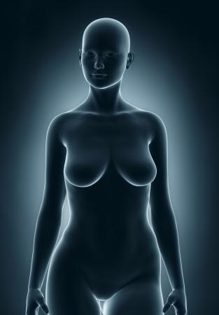 corps femme nue: Femme en position anatomique