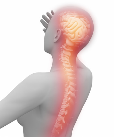 From brain to spine pain photo