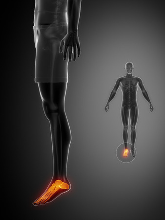 axial: ANKLE black x--ray bone scan Stock Photo