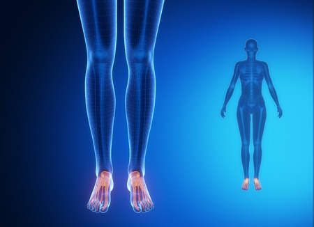 talus: ANKLE blue x--ray bone scan Stock Photo