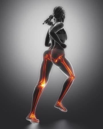 de rodillas: Jogging piernas de la mujer anatomía