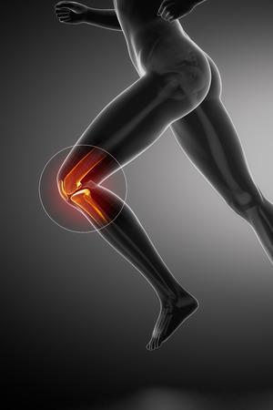 走っている女性 - 膝の解剖