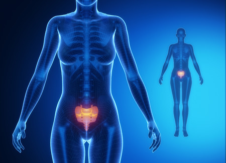 pubis: SACRUM blue x--ray bone scan Stock Photo