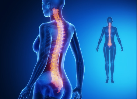 lumbar: SPINE blue x--ray bone scan Stock Photo